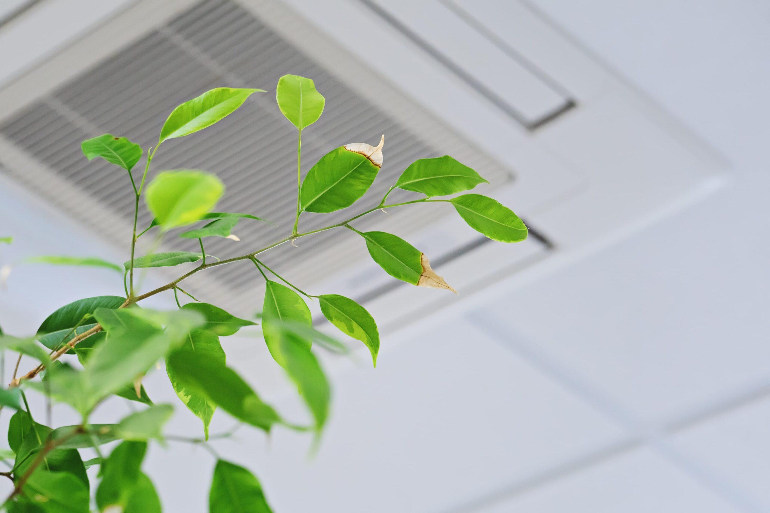会議室を利用する際は「3密」に注意する以外にも換気設備を見直そう