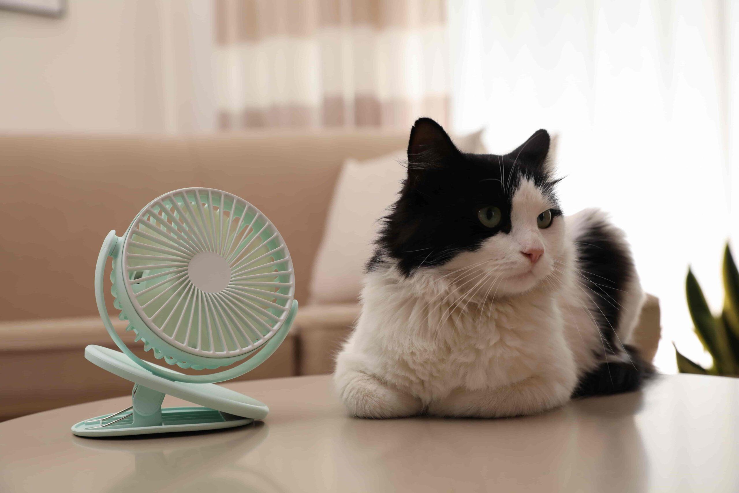高機能換気設備は換気以外にも脱臭効果が高い