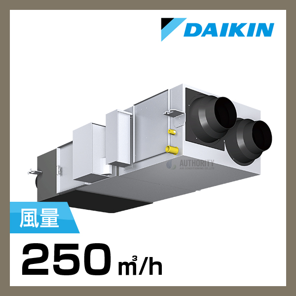 DKZ00019
